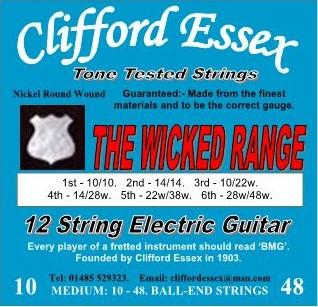 ELECTRIC 12 STRING GUITAR. MEDIUM GAUGE. 10 - 48.